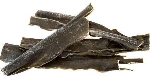 alga-kombu