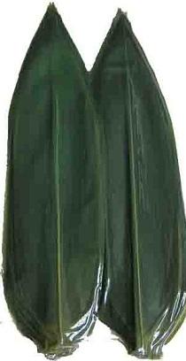 hojas-de-bambu